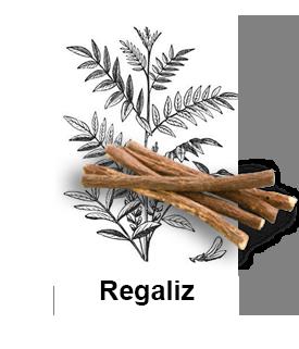 Regaliz